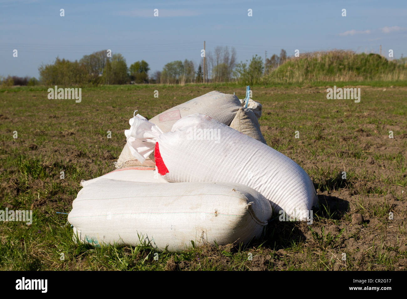 cereal seeds in sacks waiting at the edge of the field - Stock Image