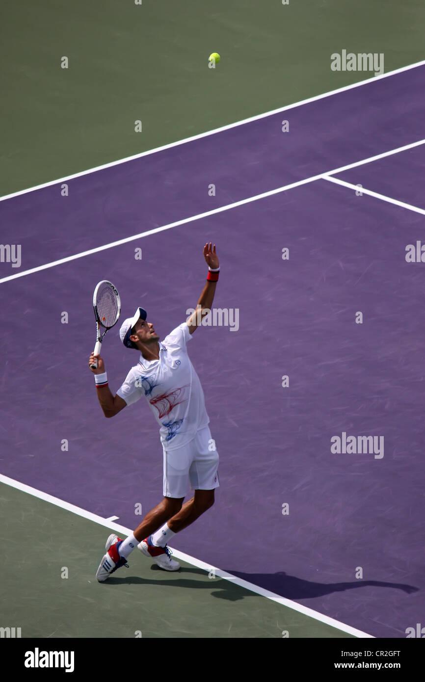 Novak Djokovic - Stock Image