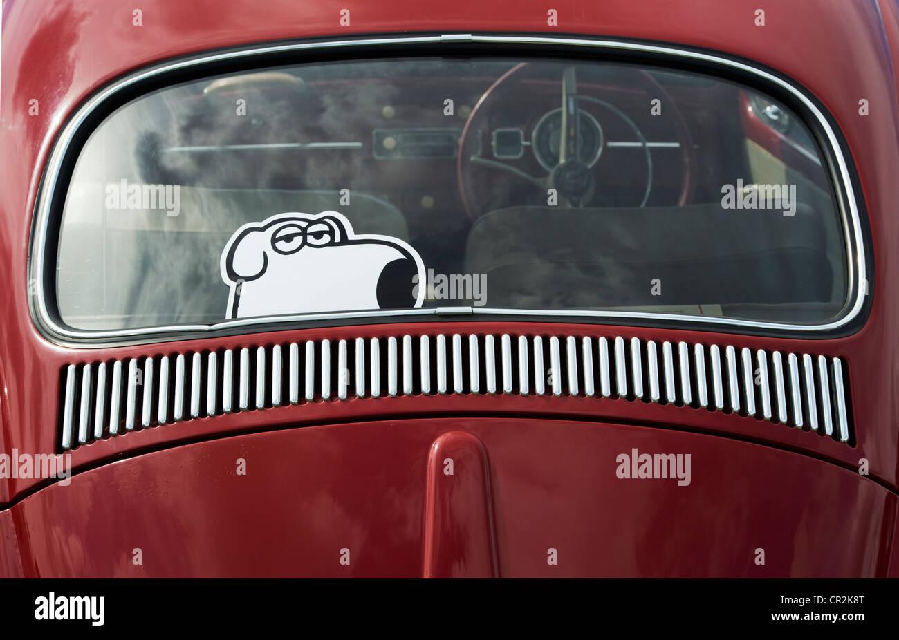 vw volkswagen beetle car with dog sticker in the back. Black Bedroom Furniture Sets. Home Design Ideas