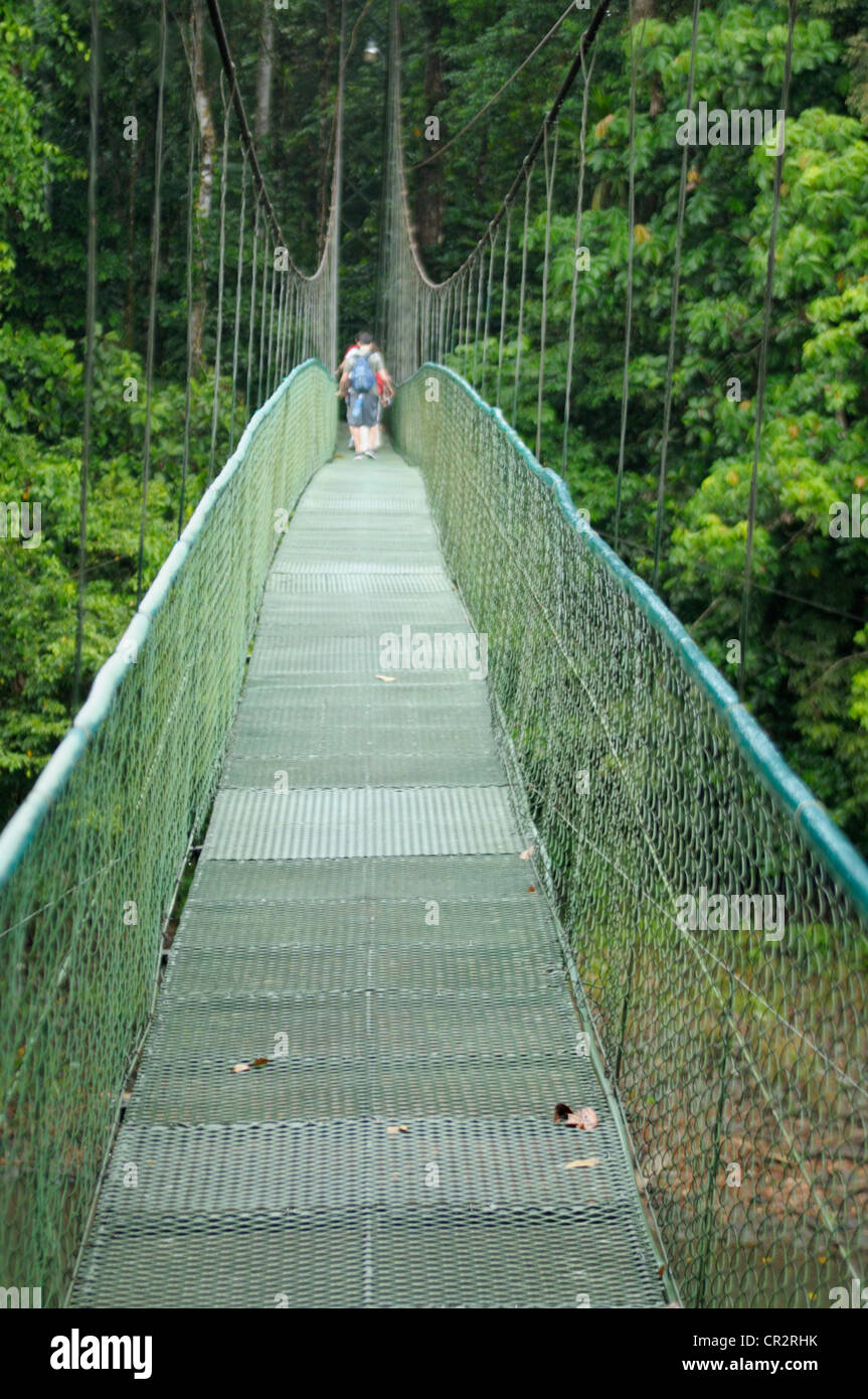 Crossing a rainforest river on a suspended cable bridge - Stock Image