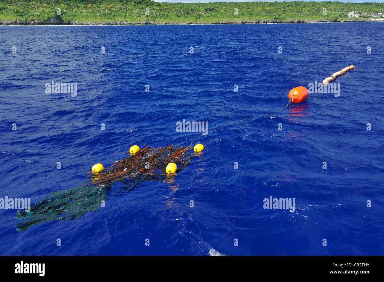 FAD, fish aggregating device, in water just north of Alofi, Nuie, South Pacific - Stock Image