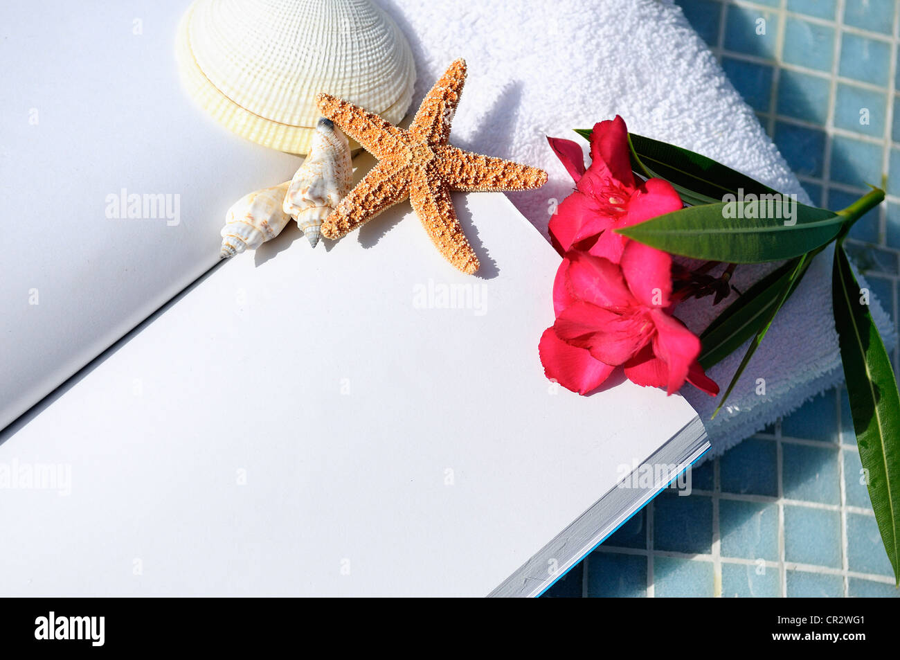 open book, shellfish and white towel beside a pool - Stock Image