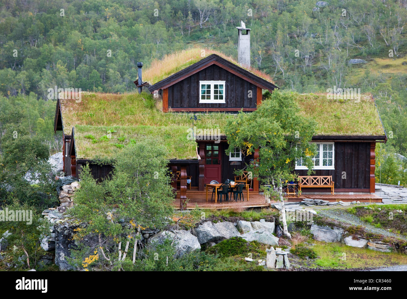 Astounding Norwegian Cottage With A Thatched Roof Norway Scandinavia Interior Design Ideas Clesiryabchikinfo
