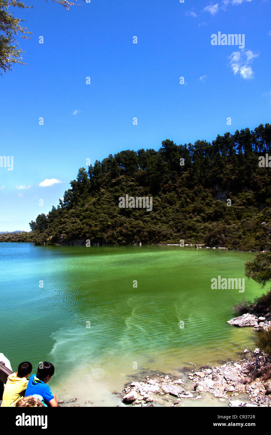 Lake Ngakoro (Grandfather) with tourists at look-out point, Wai-O-Tapu Thermal Wonderland, Rotorua, North Island - Stock Image