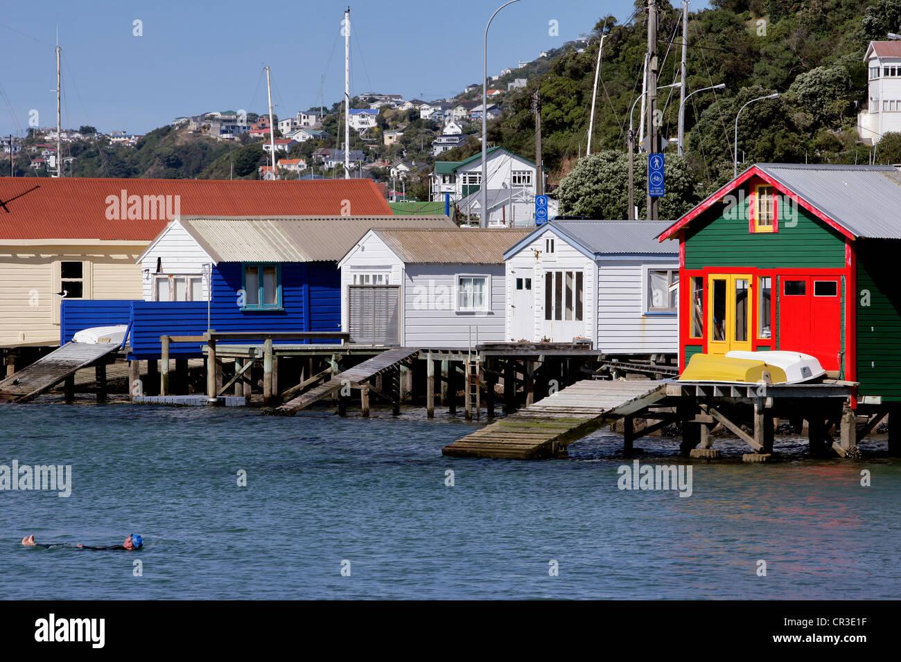 Nouvelle-Zelande, Wellington, houses on stilts - Stock Image