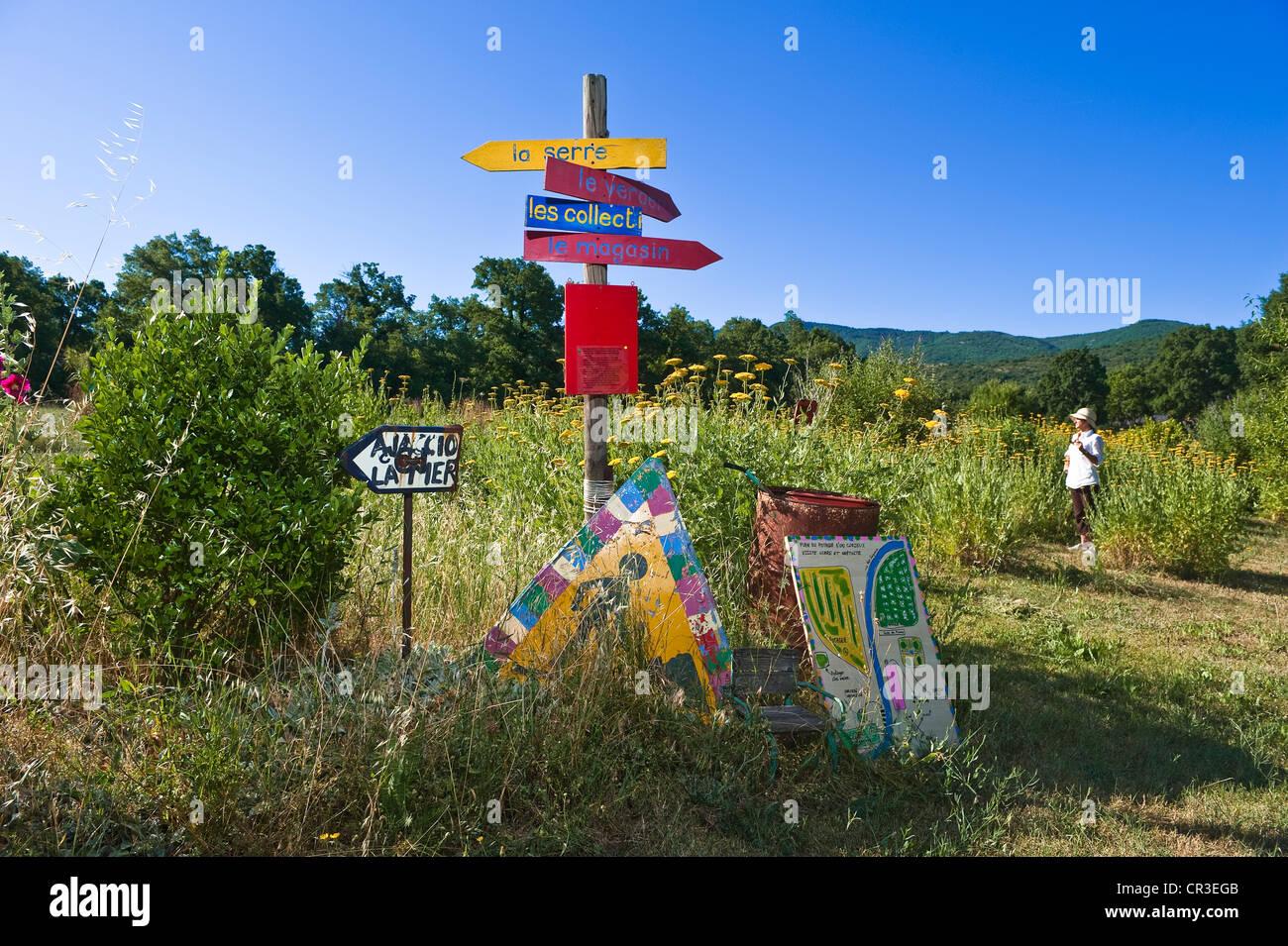 France, Vaucluse, Luberon, Saignon, Potager du Curieux (vegetatble patch of the curious minded), conservatory garden - Stock Image