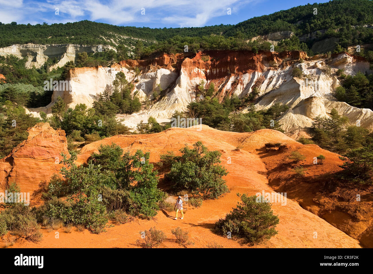 France, Vaucluse, Luberon, Rustrel, Provencal Colorado, hiker in the walk of a park - Stock Image