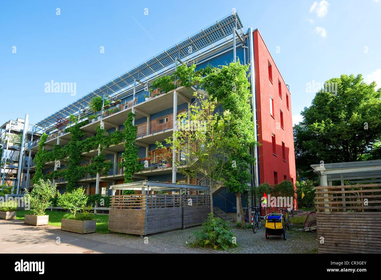 Passive house, Vauban district, Freiburg im Breisgau, Baden-Wuerttemberg, Germany, Europe - Stock Image