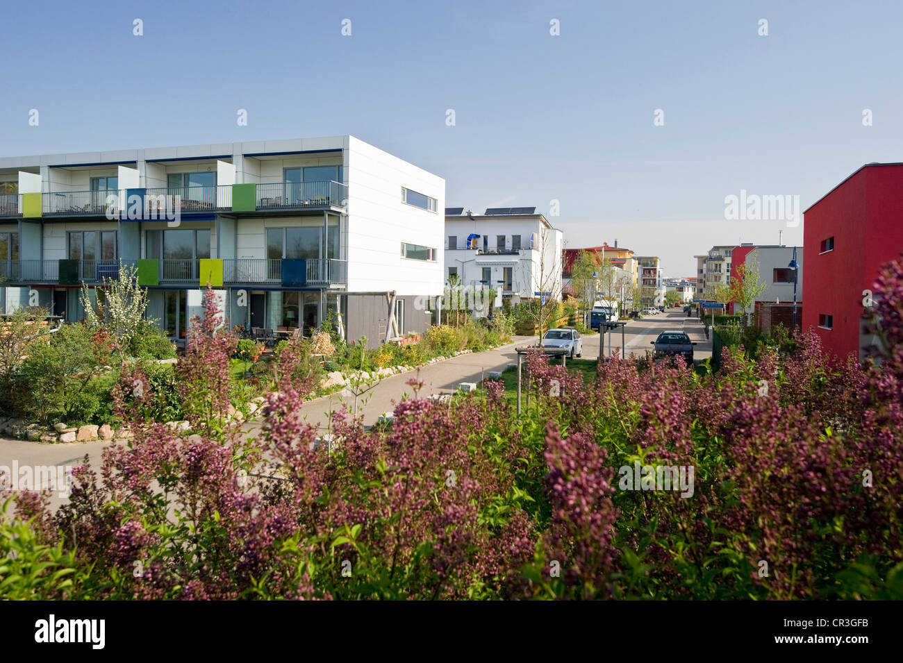 Passive houses, Rieselfeld district, Freiburg im Breisgau, Baden-Wuerttemberg, Germany, Europe - Stock Image