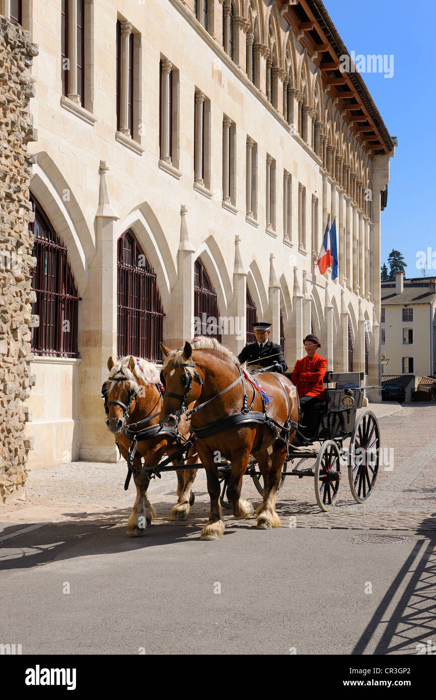 France, Saone et Loire, Maconnais, Cluny, harness of the National Stud Farm in front of the Pape Gelase facade - Stock Image