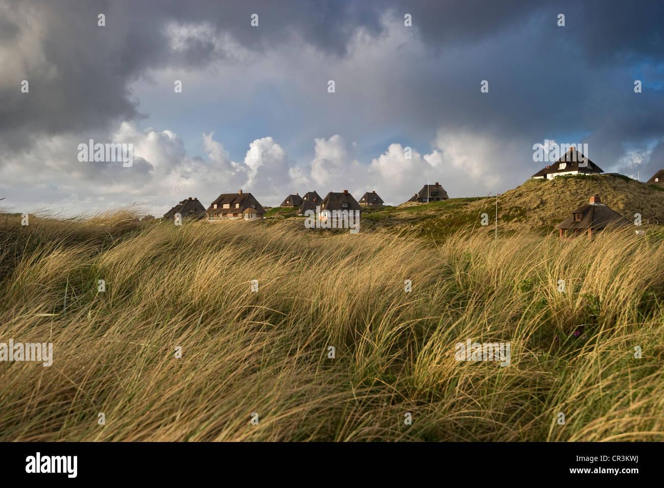 Hoernum, Sylt island, Schleswig-Holstein, Germany, Europe - Stock Image
