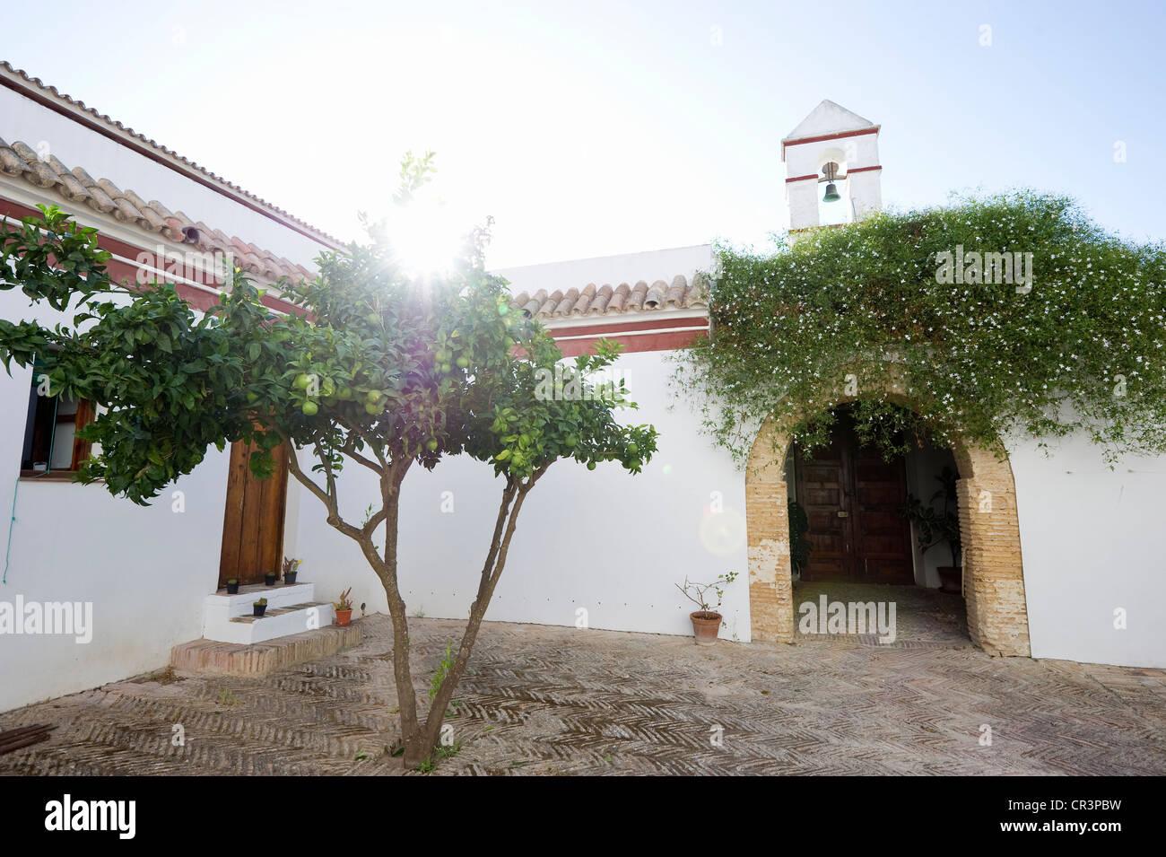 Inner courtyard of a hacienda near Barbate