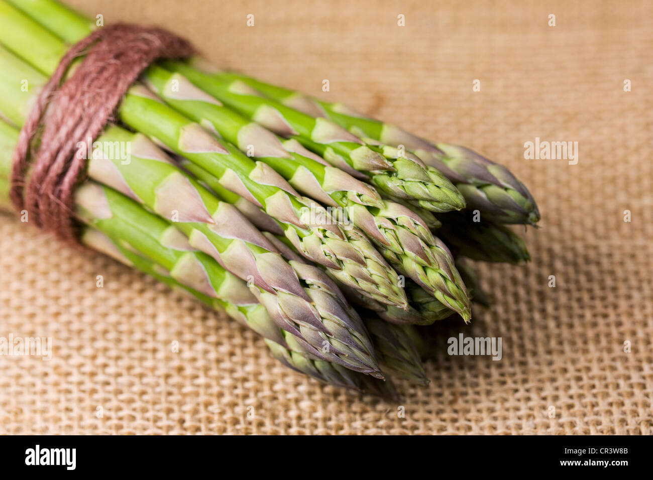 Asparagus officinalis. A bunch of Asparagus on a hessian background. - Stock Image