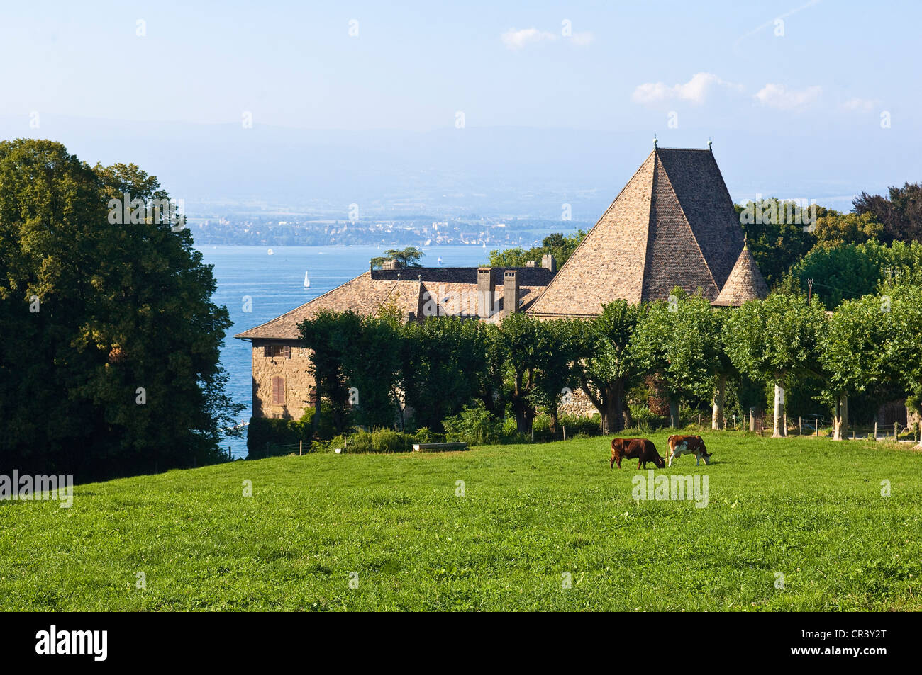 France, Haute Savoie, Chens sur Leman, the Chateau de Beauregard at the Leman Lake - Stock Image