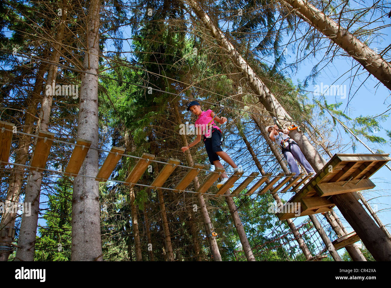 France, Isere, Adventure Forest in Marcieu pass - Stock Image