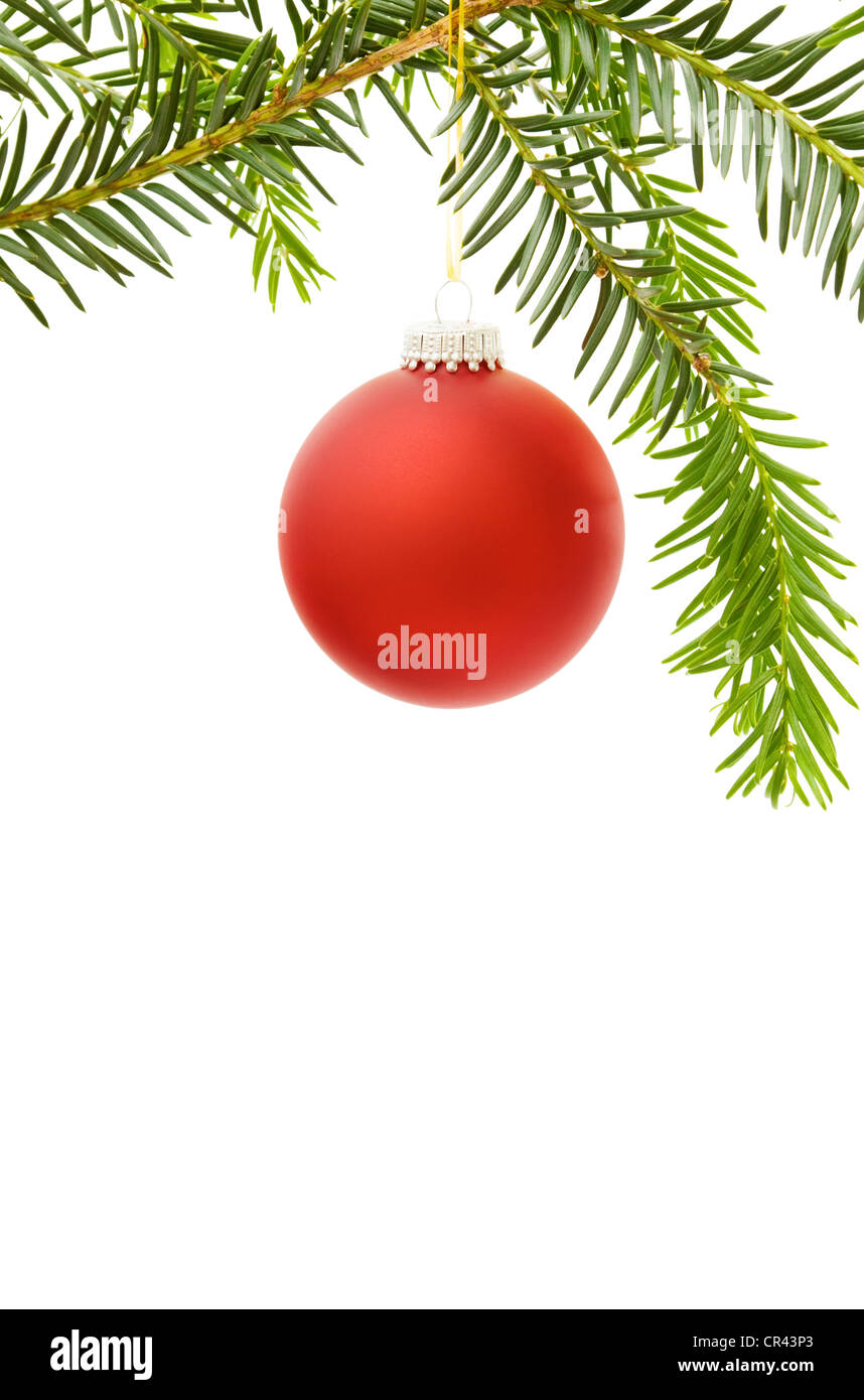 Christmas festive border with red bauble and pine tree branch. Isolated on white background. - Stock Image