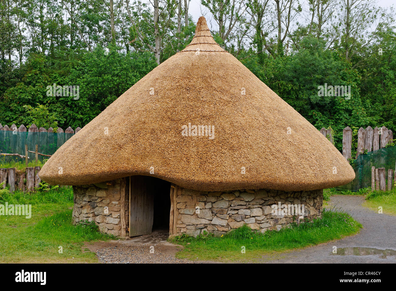 House from the Bronze Age, reconstructed, Irish National Heritage Park, Wexford, County Wexford, Ireland, Europe - Stock Image