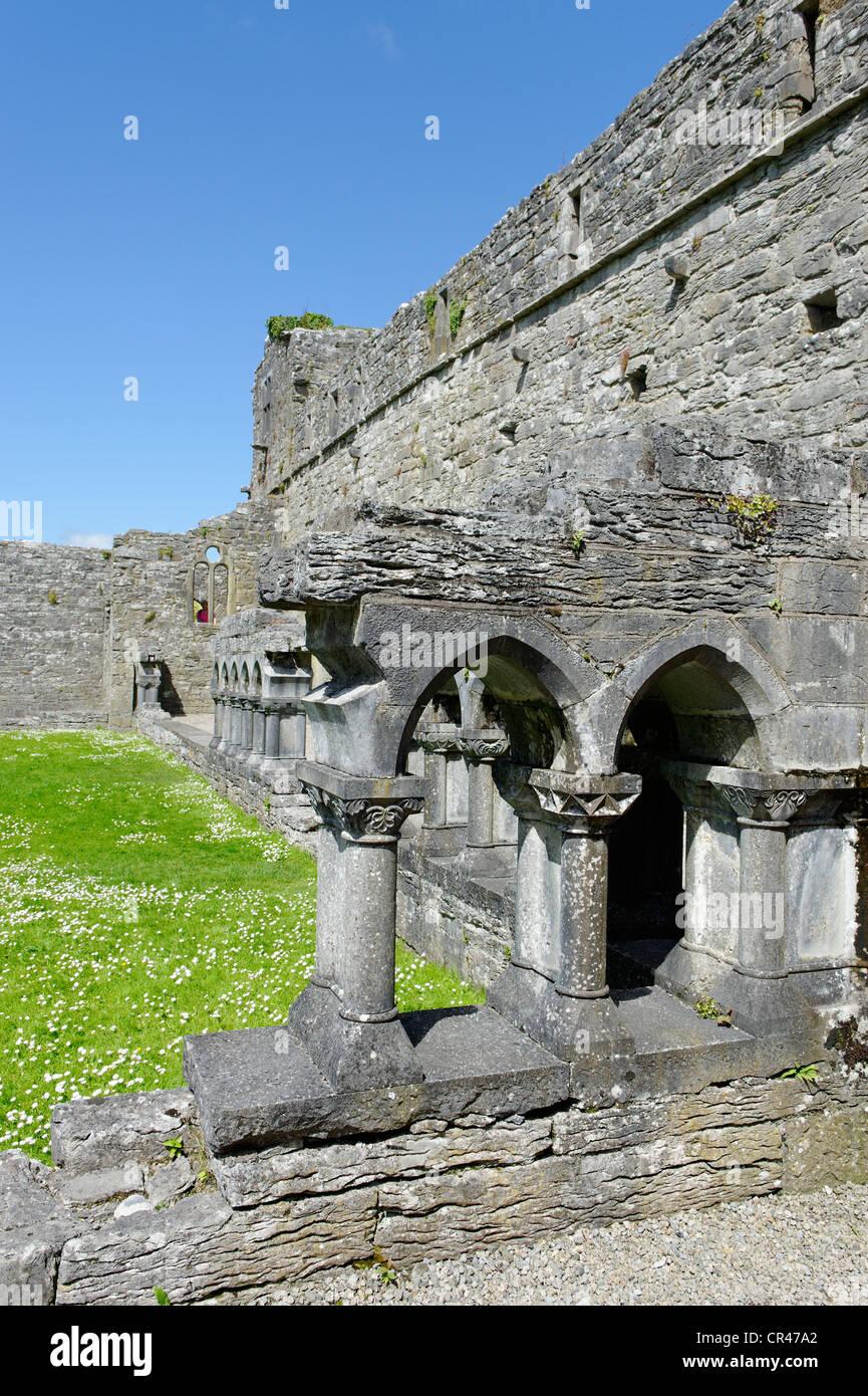 Old Abbey, Cong, County Mayo, Ireland, Europe - Stock Image