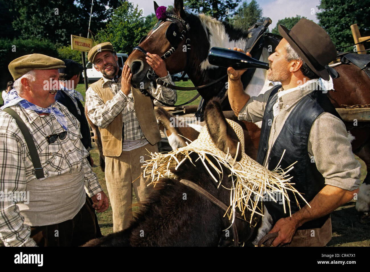 France, Marne, Pouillon, wine festival recovery with costumed - Stock Image