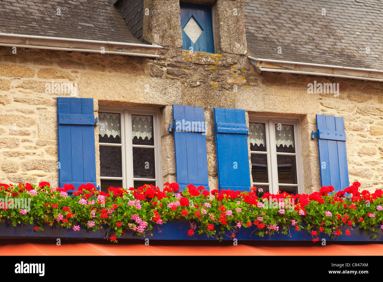 Two windows with lace curtains, blue shuitters and geraniums in window boxes in Concarneau, Brittany, France. - Stock Image