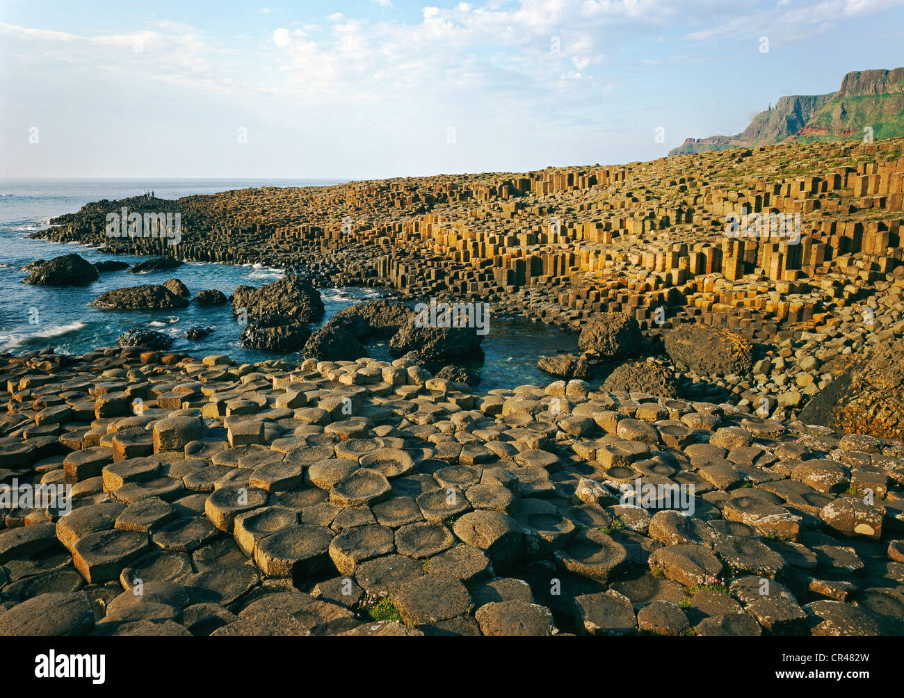 Giant's Causeway, County Antrim, Northern Ireland, United Kingdom, Europe - Stock Image