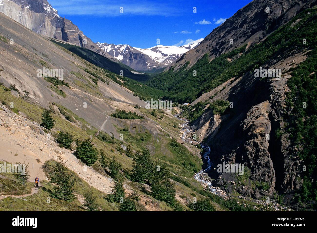 Chile, Magallanes and Antartica Chilena Region, Ultima Esperanza Province, Torres del paine National Park, trekking - Stock Image