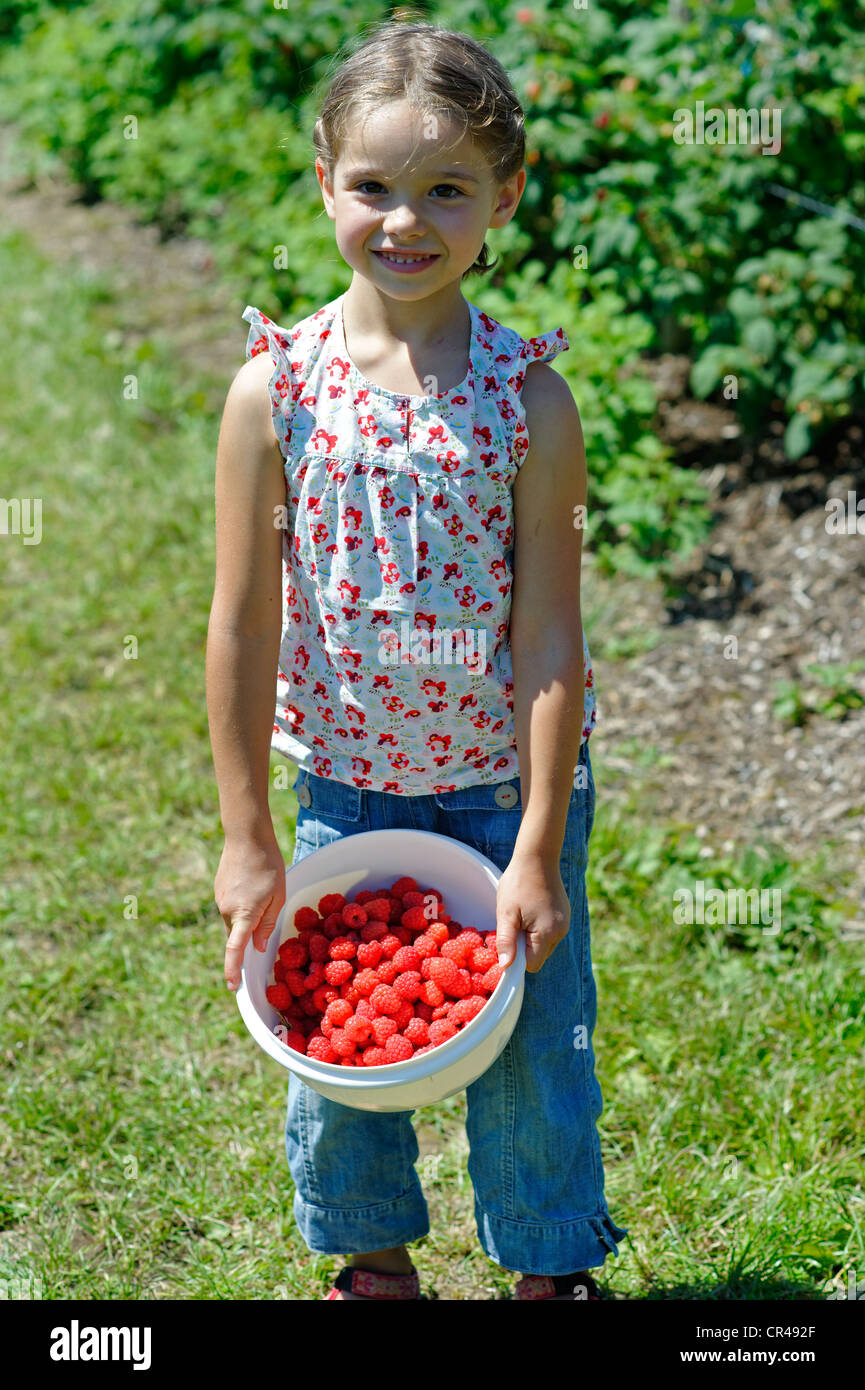 Girl on a raspberry farm with a bowl of freshly picked raspberries, Bavaria, Germany, Europe - Stock Image