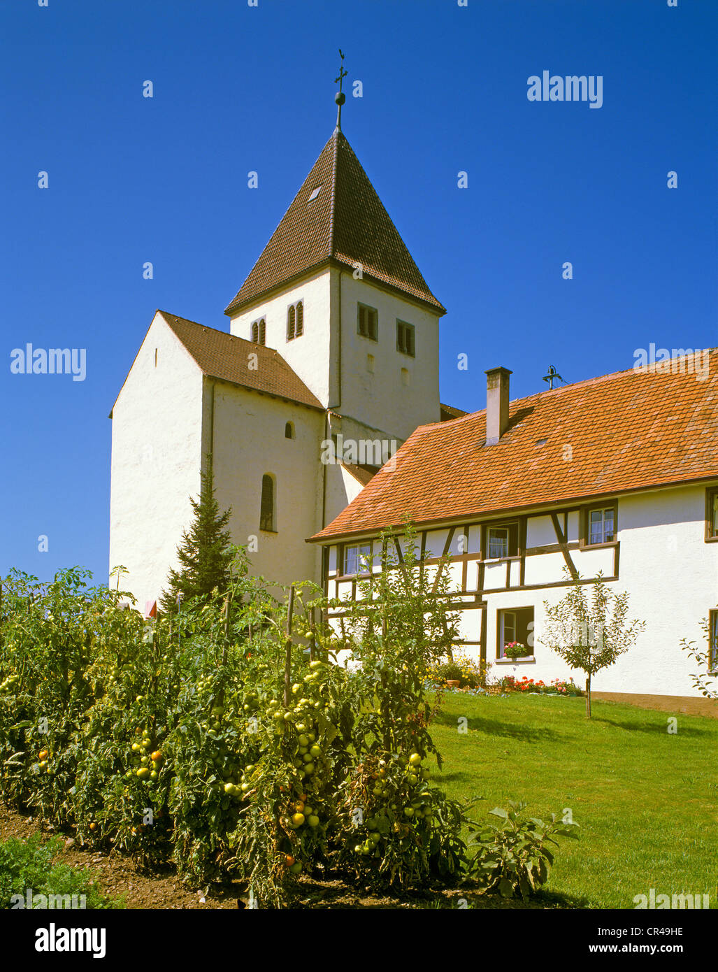 St George collegiate church, Oberzell, Lake Constance, Baden-Wuerttemberg, Germany, Europe - Stock Image