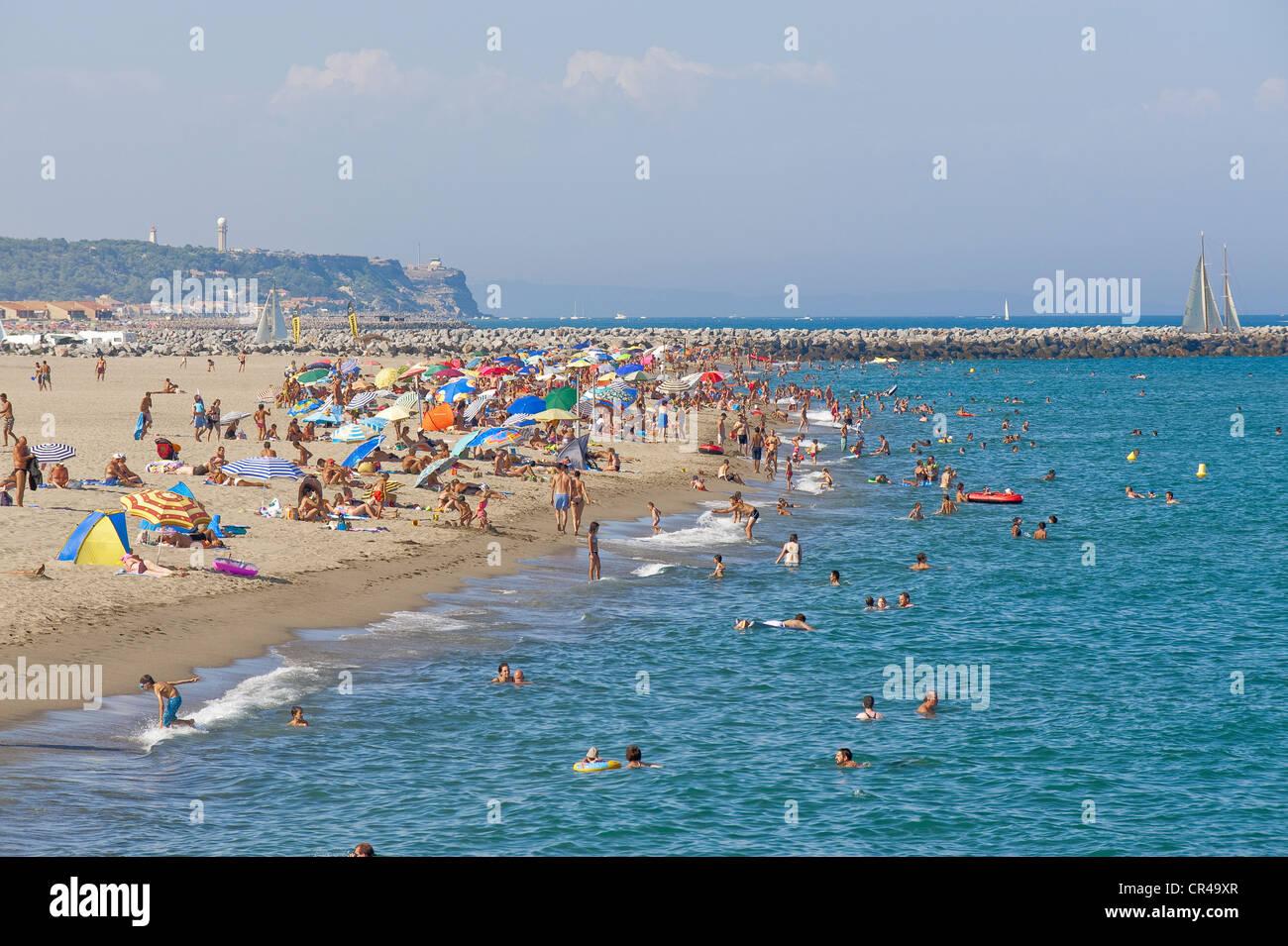 France, Aude, Corbieres, Port Leucate, beach of 18 km long Stock ...