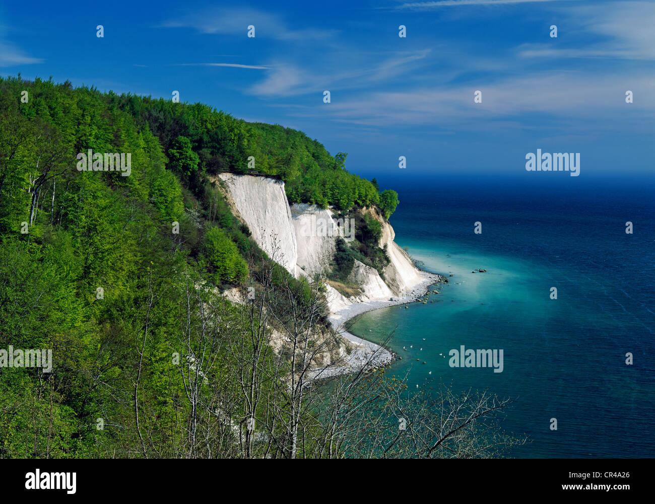 Dissower Klinken, chalk coast, Ruegen, Mecklenburg-Vorpommern, Germany, Europe - Stock Image