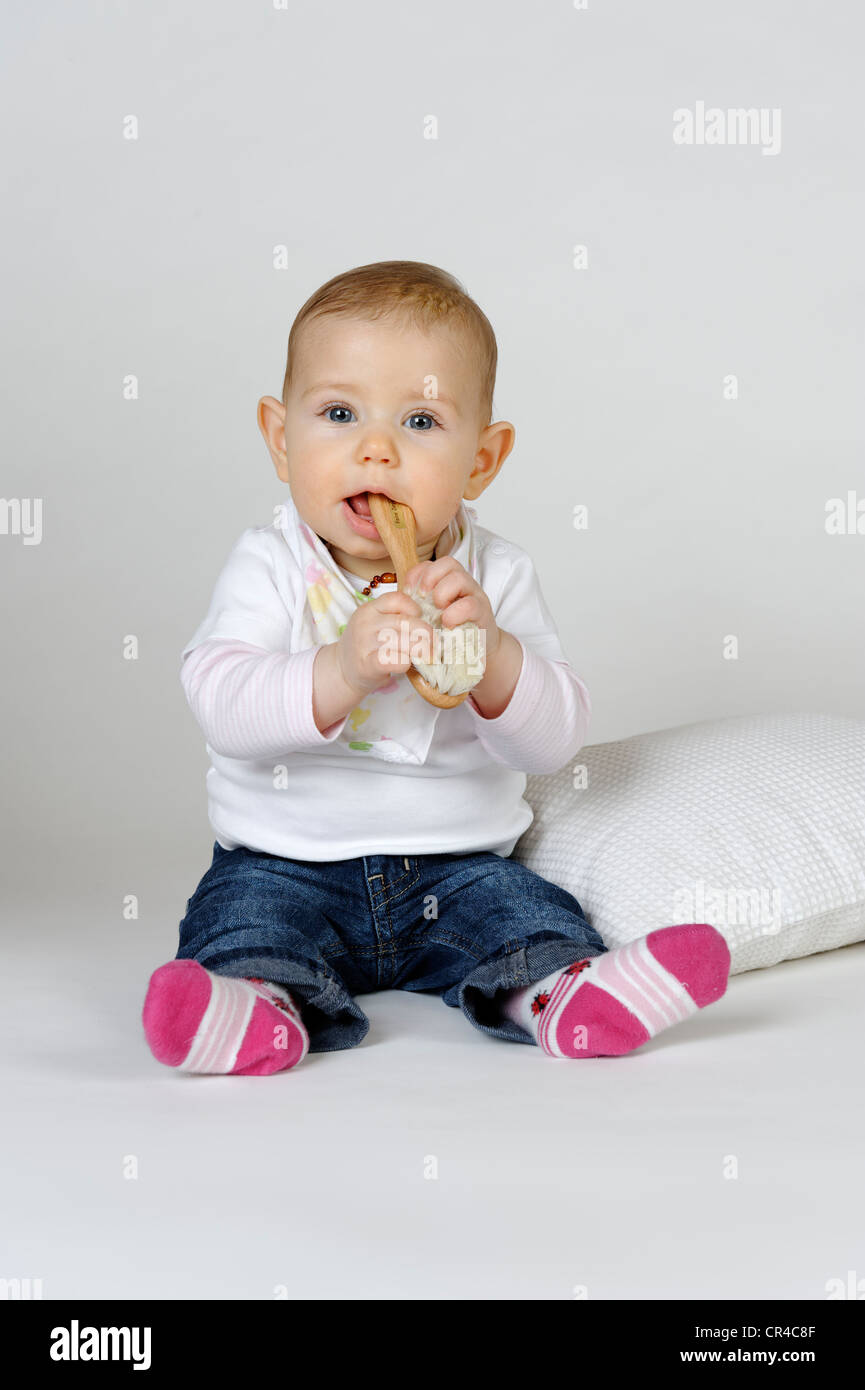 Baby, six months, putting a brush in its mouth - Stock Image