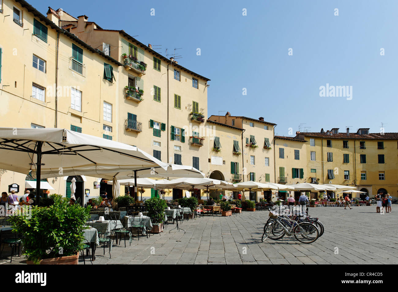 Piazza Anfiteatro, Lucca, Tuscany, Italy, Europe - Stock Image