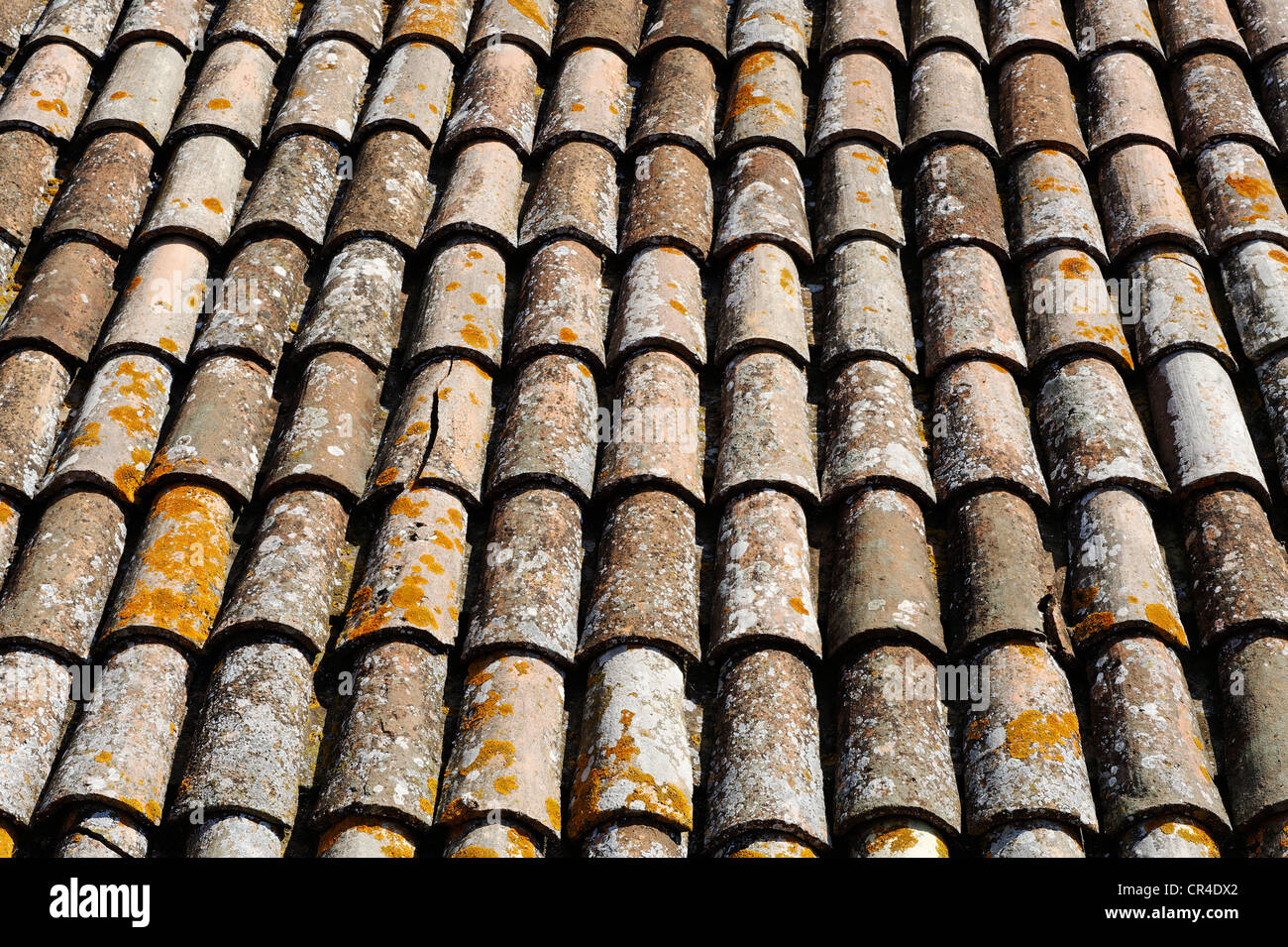 Terracotta tiled roof, Gradara, Province of Pesaro and Urbino, Marche, Italy, Europe - Stock Image