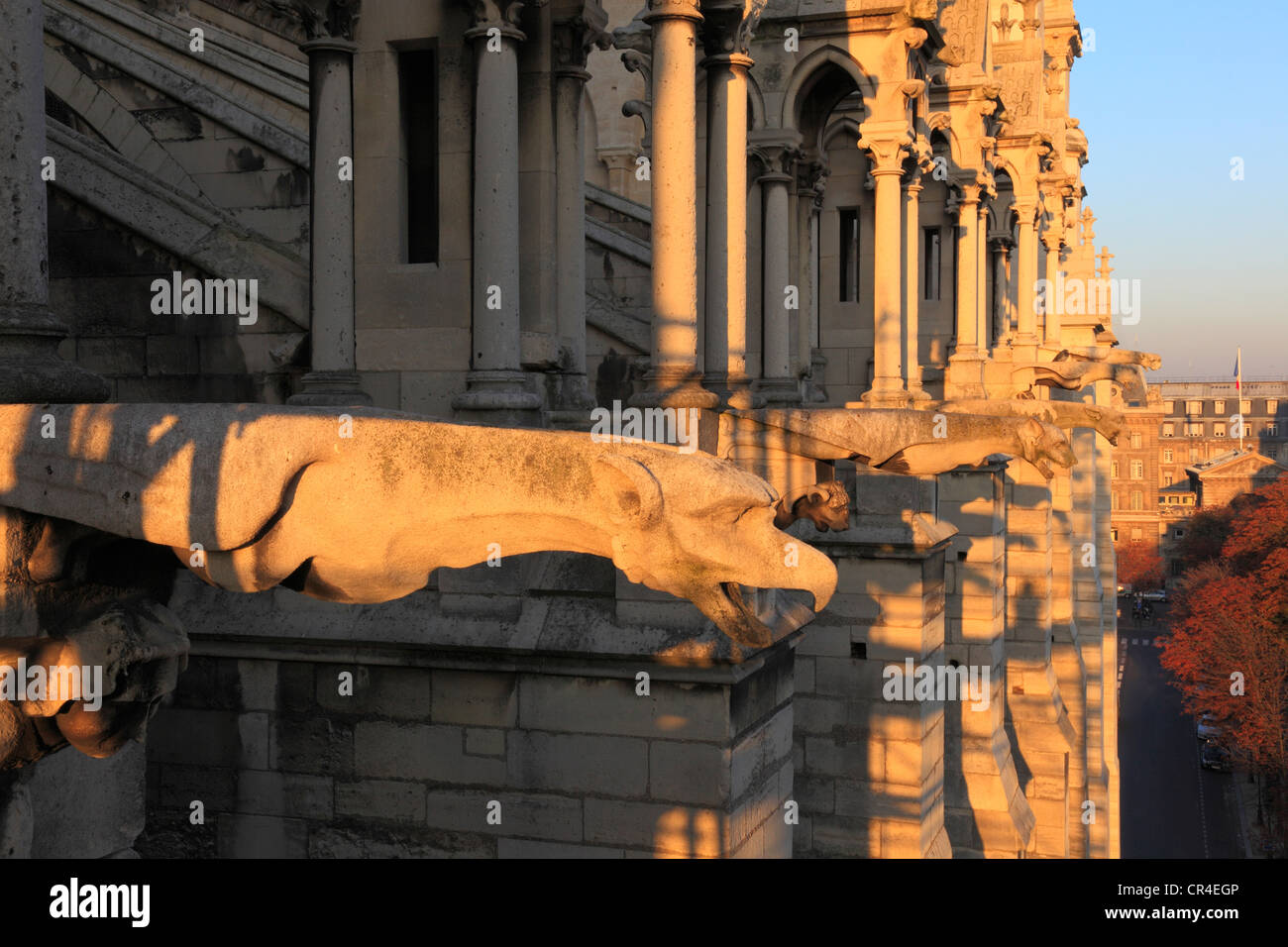 France, Paris, Ile de la Cite, gargoyles on Notre Dame de Paris cathedral cathedral north facade - Stock Image