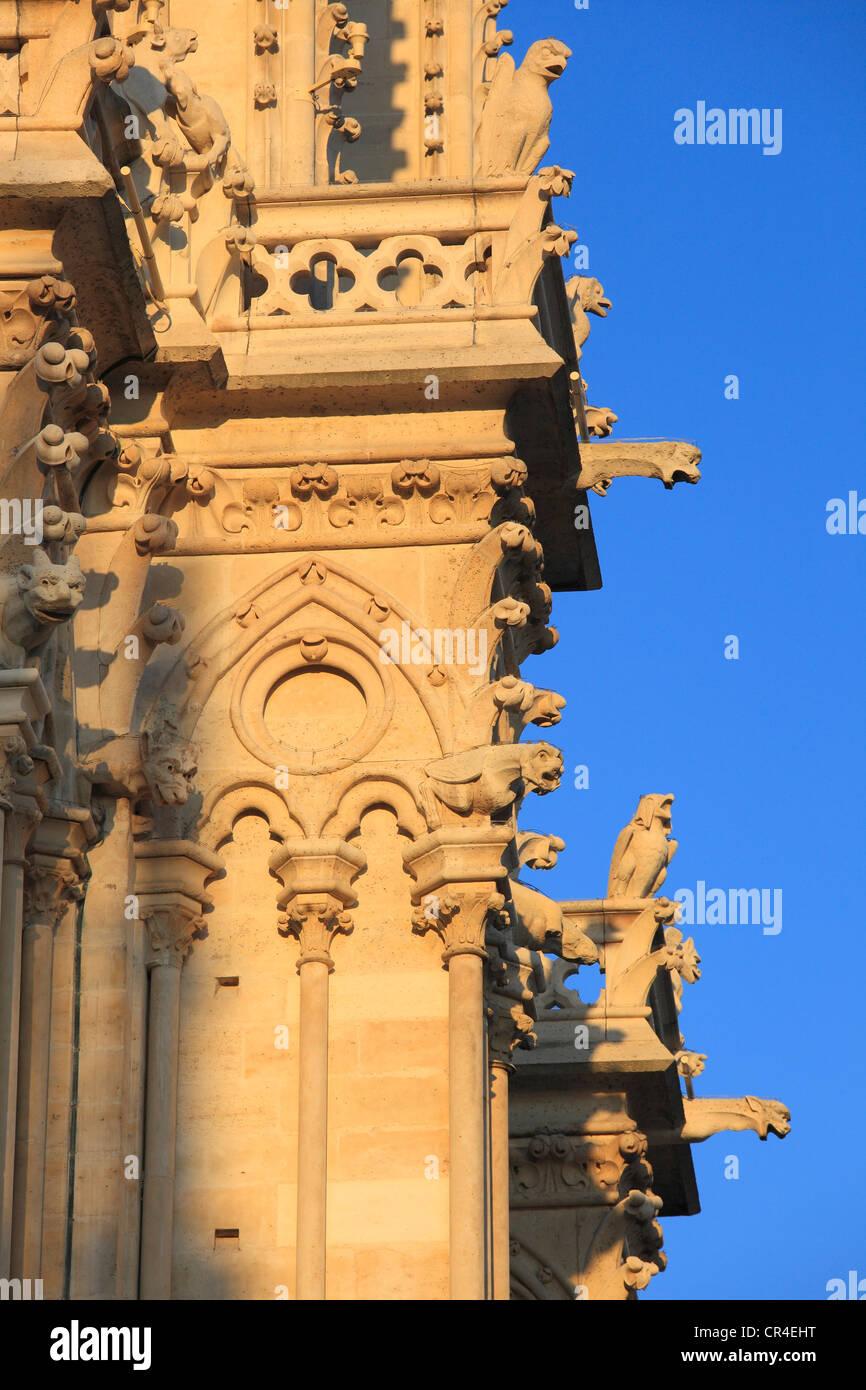 France, Paris, Ile de la Cite, Notre Dame de Paris cathedral, gargoyles on the north tower - Stock Image