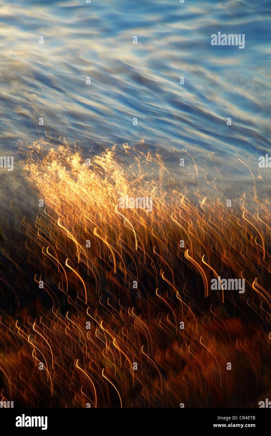 Moving water on beach at dusk with cloud reflections - Stock Image