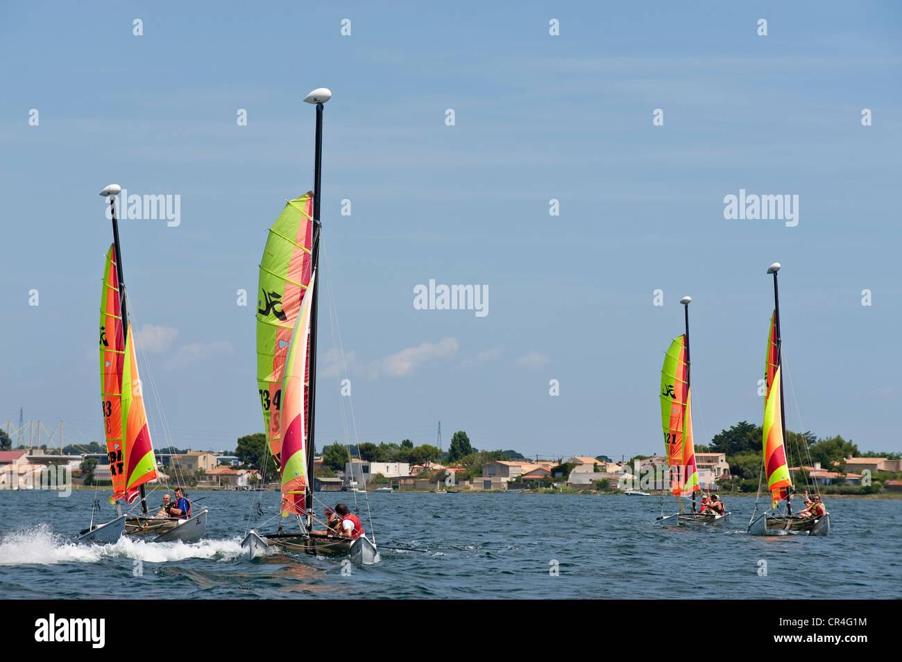 France, Herault, Sete, Bassin de Thau, Hobbies Cat, regatta of small sport catamarans - Stock Image