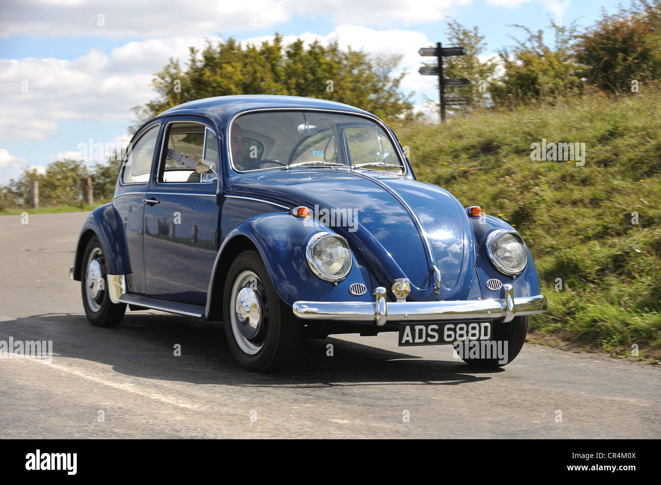 1966 VW Volkswagen Beetle classic stock air cooled bug cornering - Stock Image
