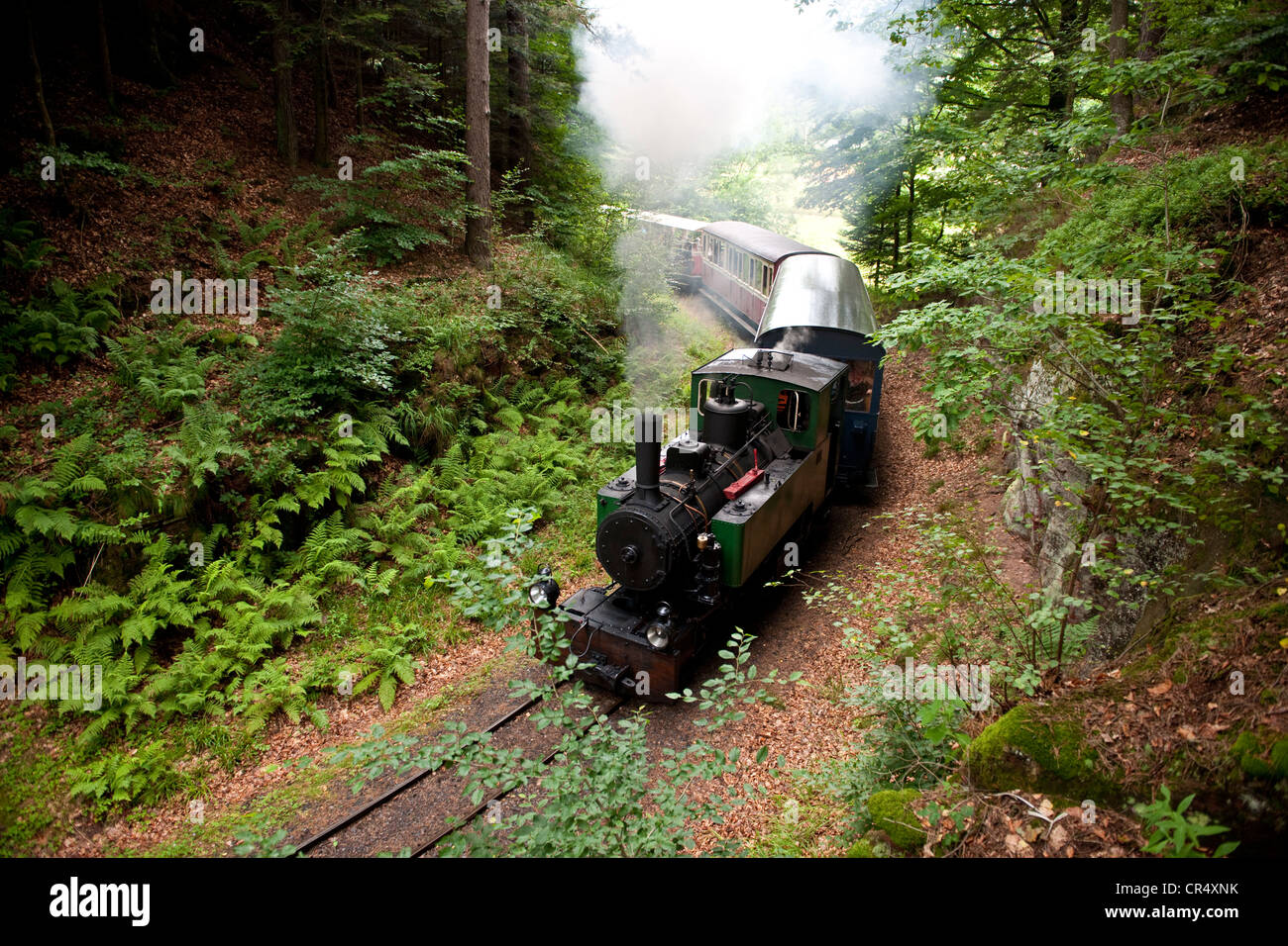 France, Moselle, Abreschviller, small train formerly forest train - Stock Image