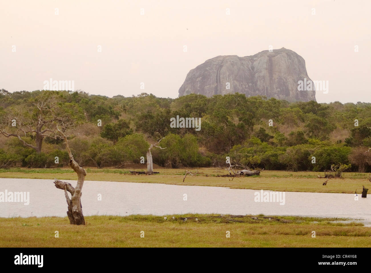 Elephant Rock, Yala West (Ruhuna) National Park, Sri Lanka - Stock Image