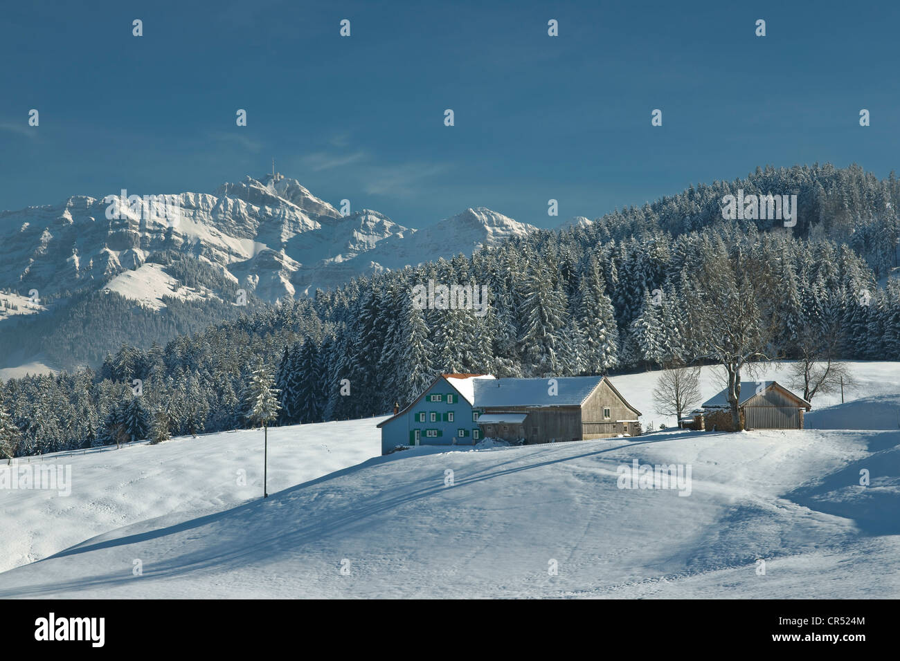 Winter Landscape With Appenzell Farm And Mt Saentis