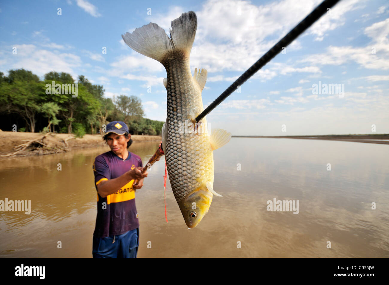 Young man from the indigenous Wichi Indians tribe fishing with a spear in the Pilcomayo river, La Curvita Indigena - Stock Image