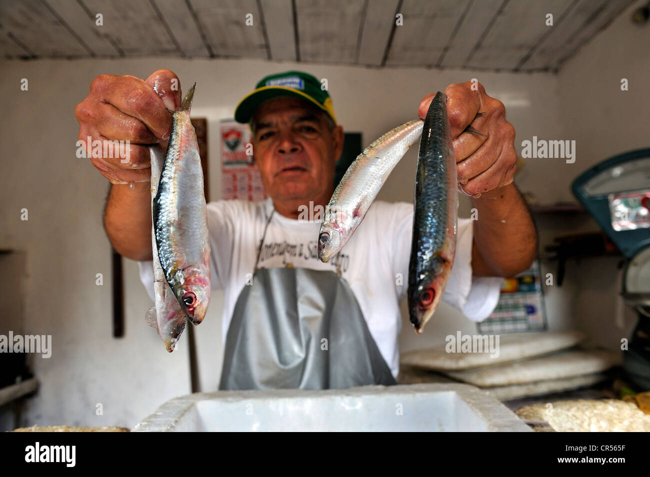 Fishmonger, Pedra de Guaratiba, Sepitiba Bay, Bahia de Sepitiba, Rio de Janeiro, Brazil, South America Stock Photo