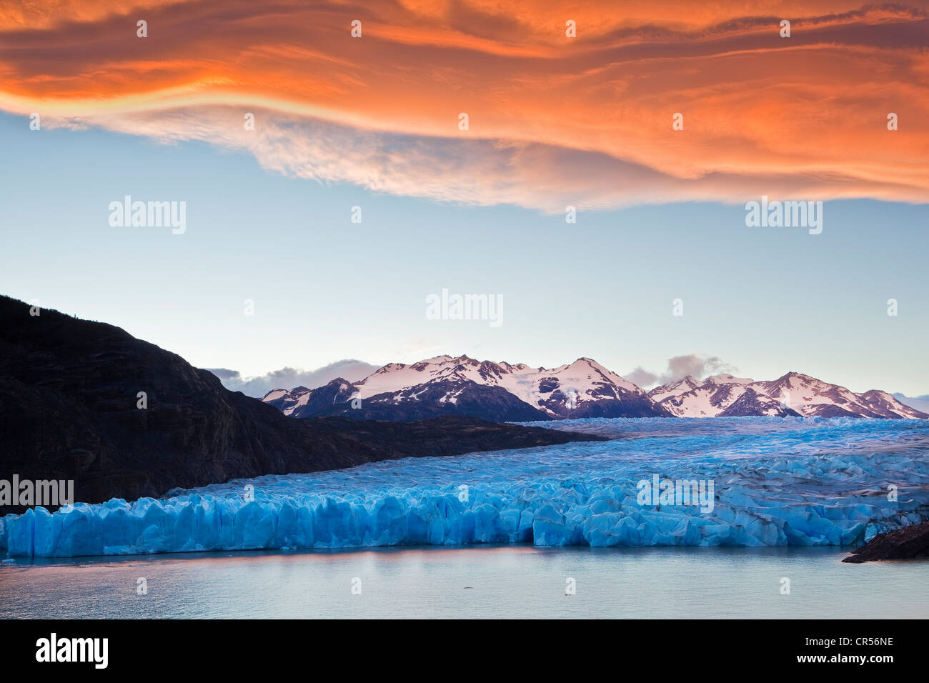 Grey Glacier, Torres del Paine National Park, Patagonia, South America - Stock Image