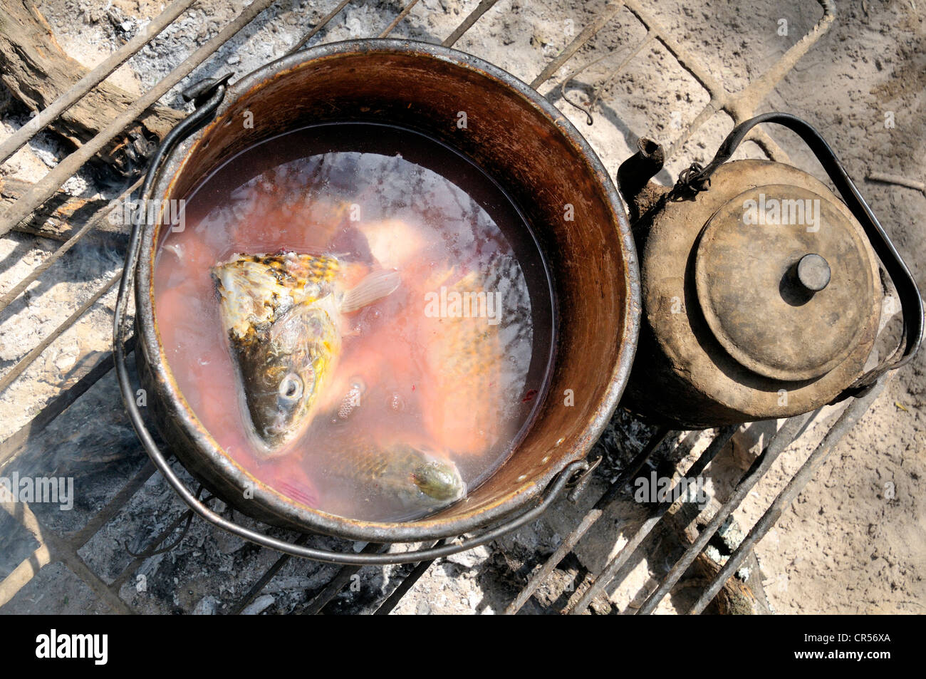 Preparation of fish soup on an open fire, indigenous community of La Curvita, in the language of the Wichi Indians: - Stock Image