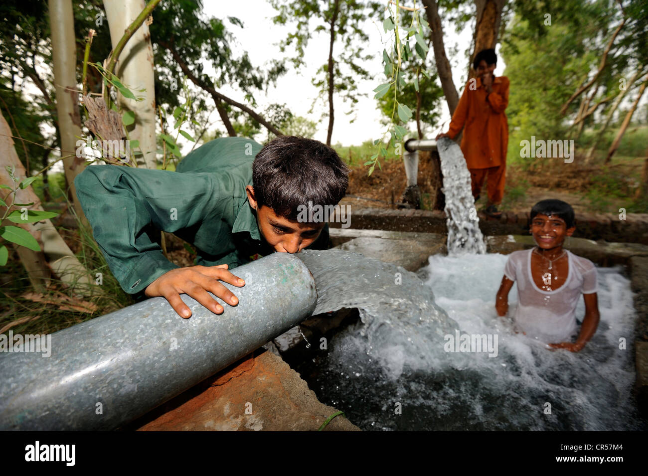 Children cooling off at the catchment of a spring that is fed by water pipes, Basti Lehar Walla village, Punjab, - Stock Image
