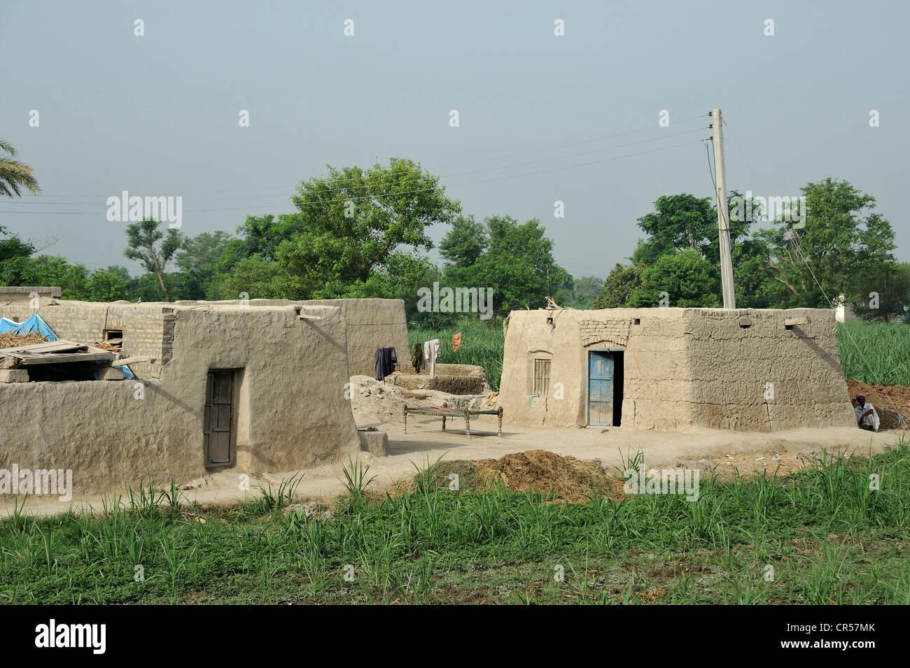 Village with traditional mud-brick houses, Lashari Wala village, Punjab, Pakistan, Asia - Stock Image