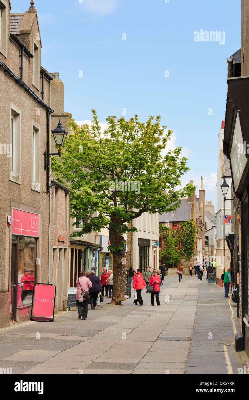 Scene in pedestrianised main street with The Big Tree and people shopping in Albert Street Kirkwall Orkney Islands - Stock Image