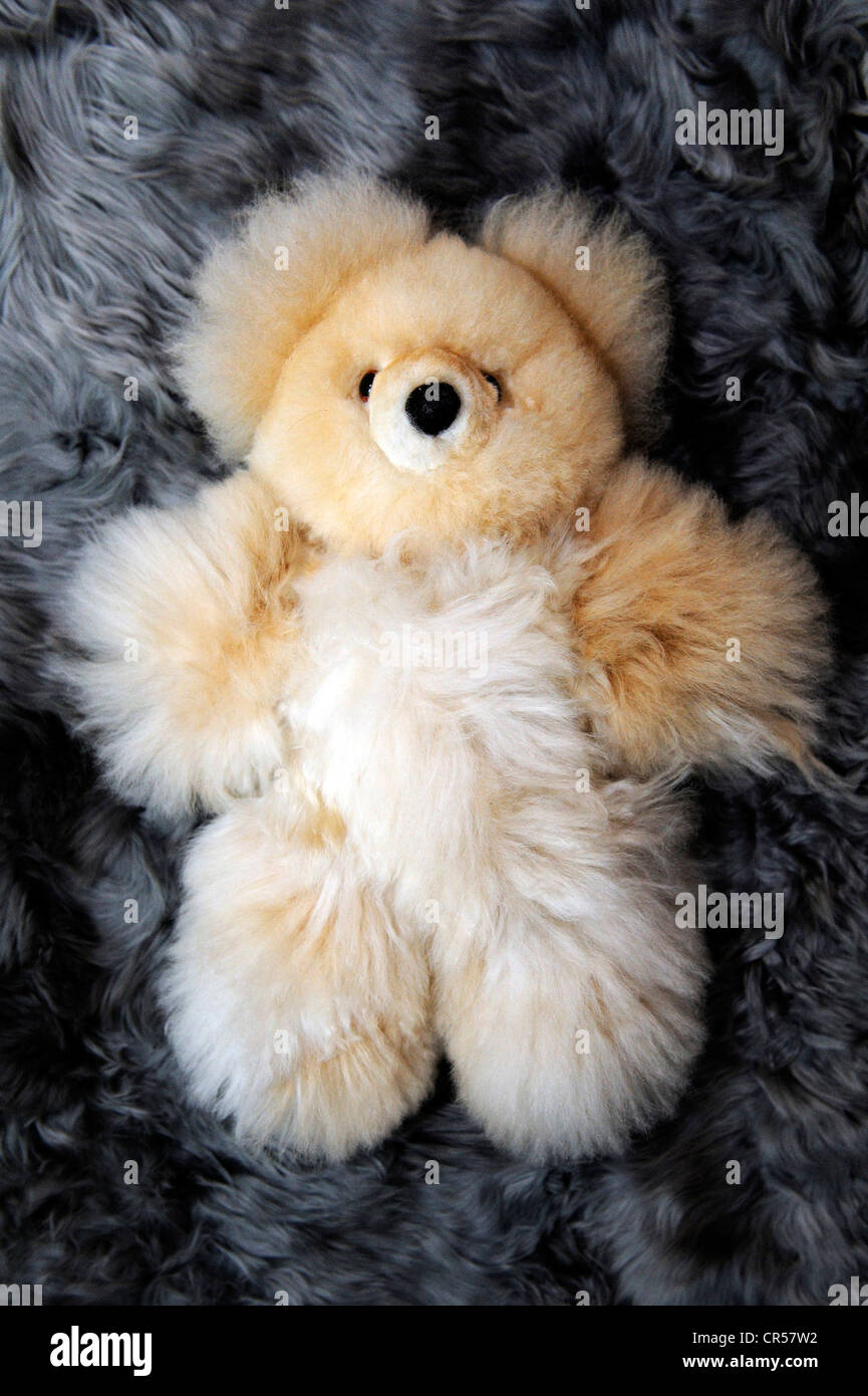 Teddy Bear Production Of Soft Toys And Carpets From Alpaca Fur In A