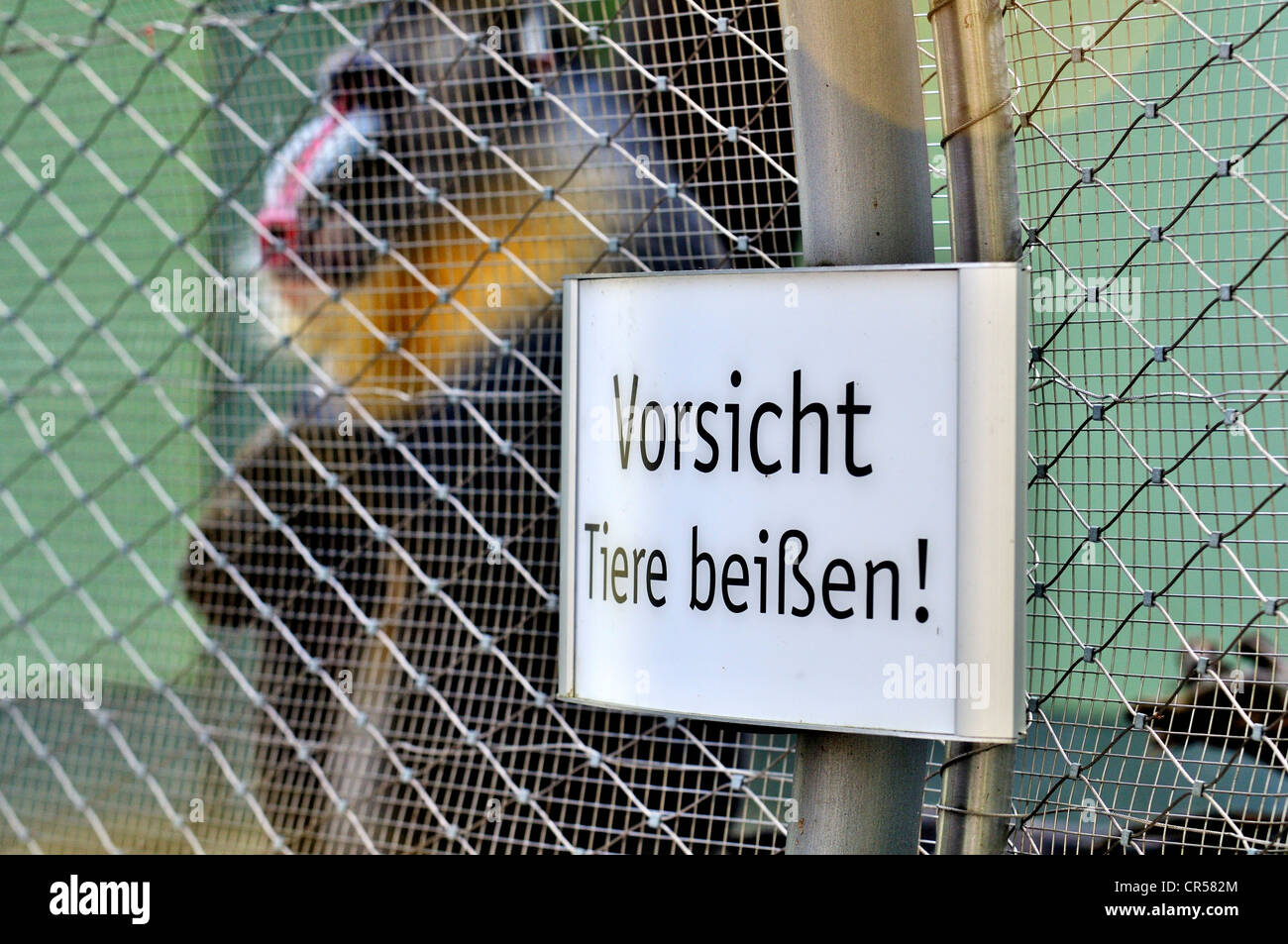 Sign, 'Vorsicht Tiere beissen' or 'Warning animals bite' on a monkey cage, Hellabrunn zoo, Munich, - Stock Image